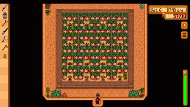 STARDEW VALLEY SOME TRICKS FARM